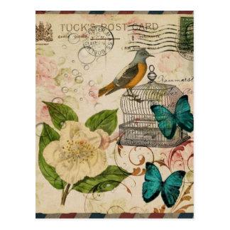 girly french botanical bird floral paris fashion postcard