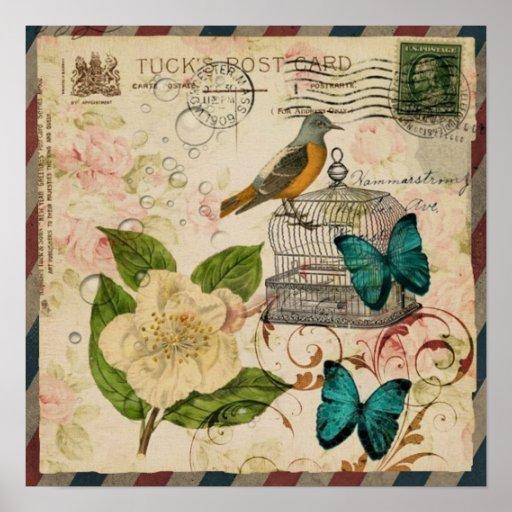 girly french botanical bird rose paris fashion print