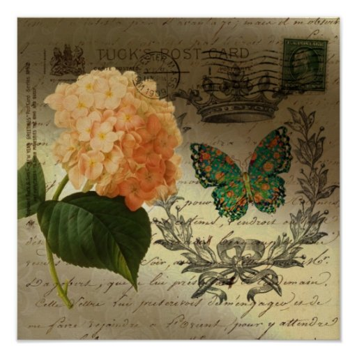 girly Hydrangea  butterfly vintage paris Posters