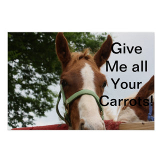 Give Me all Your Carrots! Print