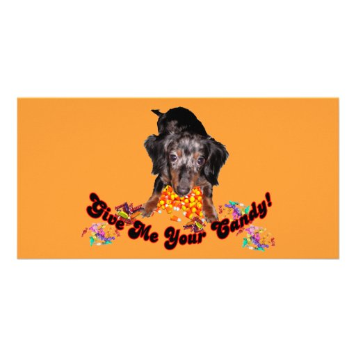 Give Me Your Candy Dachshund and Candy Customized Photo Card