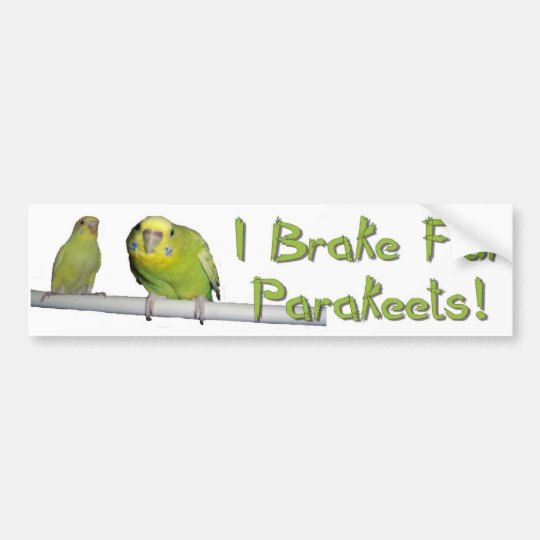 Give Parakeets A Brake Bumper Sticker