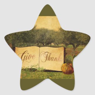 Give Thanks for Thanksgiving Star Sticker