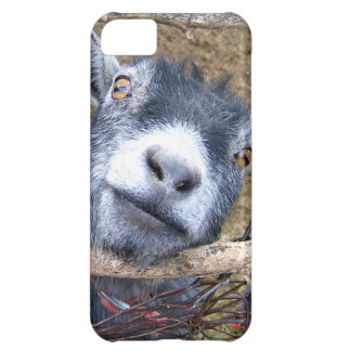 Give Us A Kiss... iPhone 5C Case