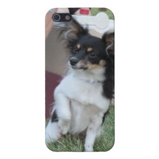 Gizmo Chihuahua iPhone5 Case iPhone 5 Case