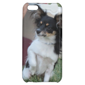 Gizmo Chihuahua iPhone5 Case Case For iPhone 5C