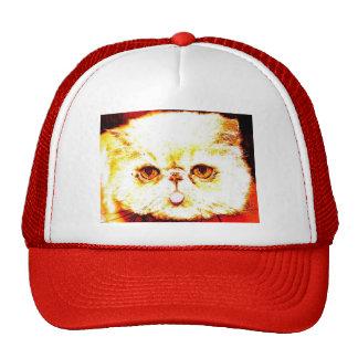gizmo hats