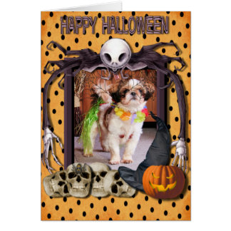 Gizmo - Shih Tzu - Anderson Greeting Card