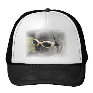 Gizmo the Dog that Helps others Hats