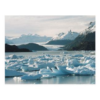 Glacial Icebergs Postcard