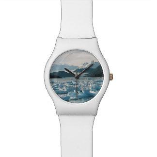 Glacial Icebergs Watch