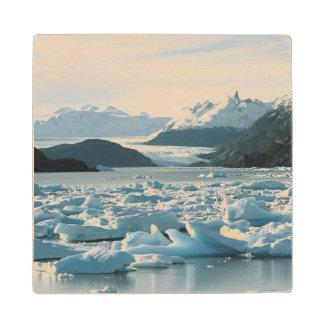 Glacial Icebergs Wood Coaster