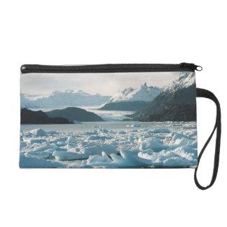 Glacial Icebergs Wristlet
