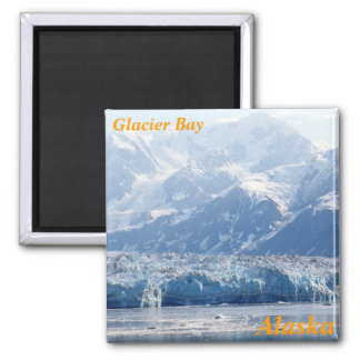 glacier bay fridge magnets