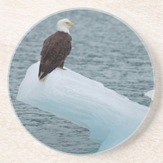 Glacier Bay National Park Bald Eagle Coasters