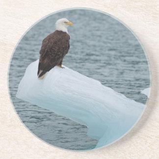 Glacier Bay National Park Bald Eagle Coasters
