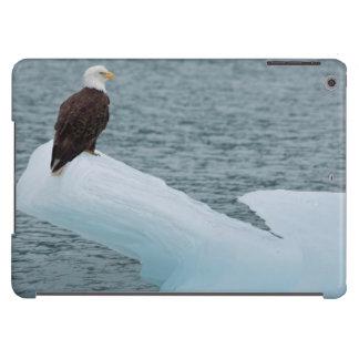 Glacier Bay National Park Bald Eagle iPad Air Cover