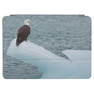 Glacier Bay National Park Bald Eagle iPad Air Cover