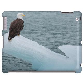 Glacier Bay National Park Bald Eagle iPad Case