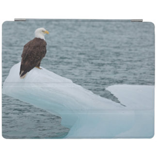 Glacier Bay National Park Bald Eagle iPad Cover