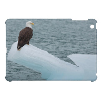 Glacier Bay National Park Bald Eagle iPad Mini Cases