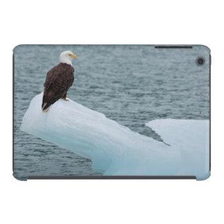 Glacier Bay National Park Bald Eagle iPad Mini Retina Cover