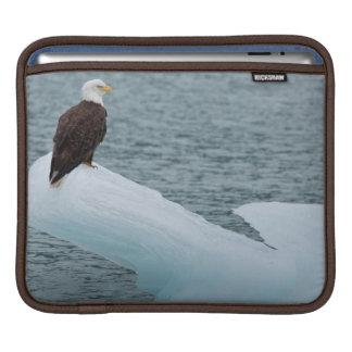 Glacier Bay National Park Bald Eagle iPad Sleeve