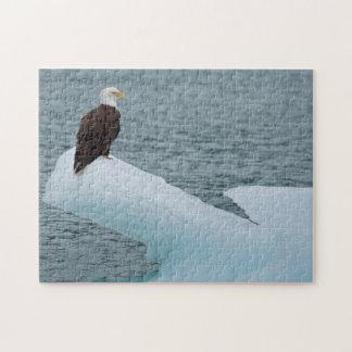 Glacier Bay National Park Bald Eagle Puzzle