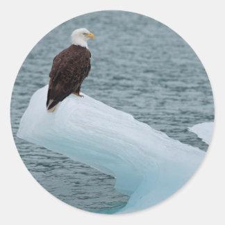 Glacier Bay National Park Bald Eagle Round Sticker