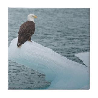 Glacier Bay National Park Bald Eagle Small Square Tile