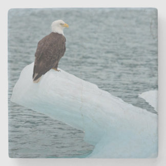 Glacier Bay National Park Bald Eagle Stone Beverage Coaster