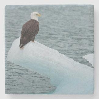 Glacier Bay National Park Bald Eagle Stone Coaster