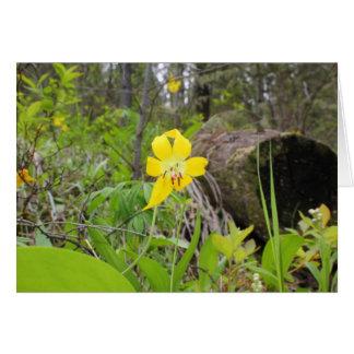 Glacier Lily Greeting Card