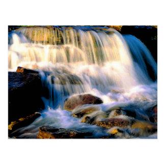 Glacier National Park Waterfalls Postcard