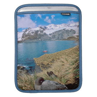 Glaciers and sailing yacht in background iPad sleeve