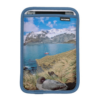 Glaciers and sailing yacht in background sleeve for iPad mini