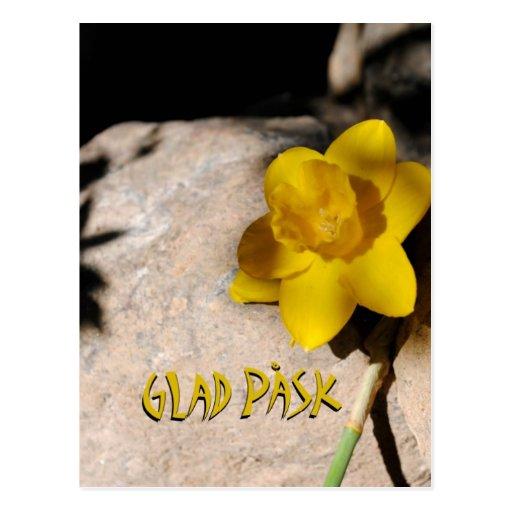 Glad Påsk påsklilja Postkarten