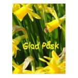 Glad Påsk Postkarte
