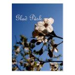 Glad Påsk Postkarten