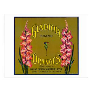 Gladiola Brand Citrus Crate Label Postcard