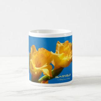 Gladiolus Kaffee Haferl