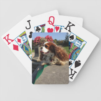Glamour Shot Bicycle Playing Cards