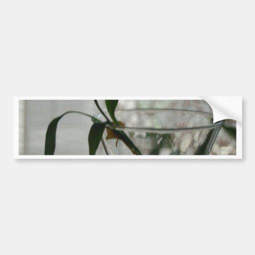 Glass and Plant Bumper Sticker