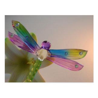 Glass Dragonfly Postcard