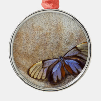 Glass-wing Butterfly Egyptian Goose Feather Christmas Ornament