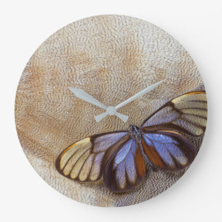 Glass-wing Butterfly Egyptian Goose Feather Large Clock