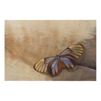 Glass-wing Butterfly Egyptian Goose Feather Wood Wall Decor