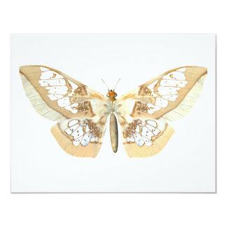 GlassWing Butterfly 11 Cm X 14 Cm Invitation Card