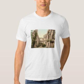 Glastonbury Abbey II, Somerset, England Tee Shirts