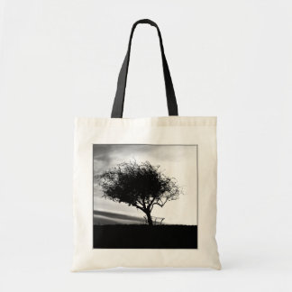 Glastonbury Hawthorn. Tree. Black and White. Tote Bag